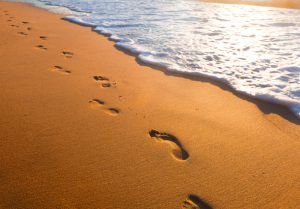 Footprints in the sand at the beach